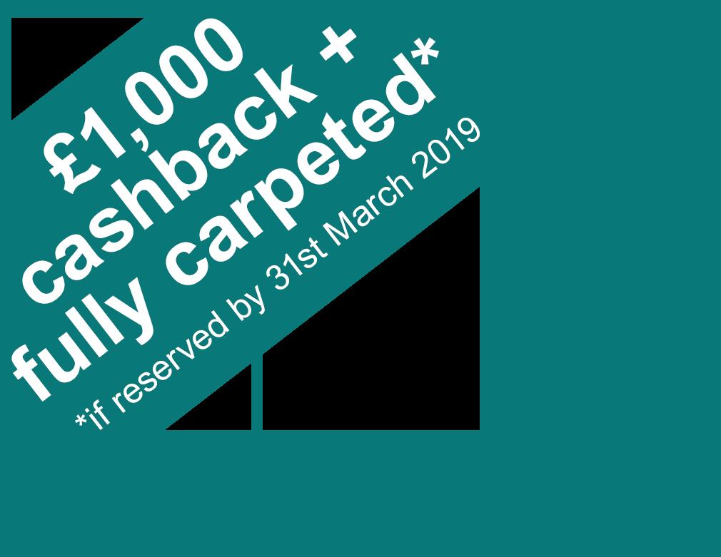 Cash back banner
